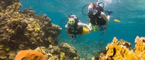 Fantastic Scube Diving Program