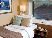 Solo Oceanview Stateroom